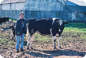 Beverly standing next to one of her cows